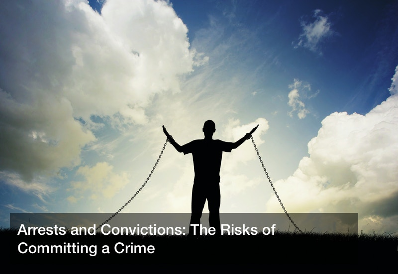 Arrests and Convictions: The Risks of Committing a Crime