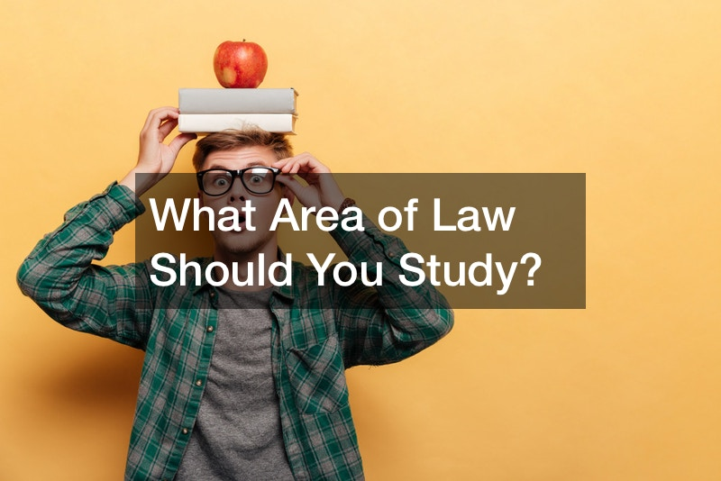 What Area of Law Should You Study?